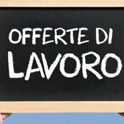 Ad categories offerte di lavoro autista - Porta portese offerte lavoro autista ...