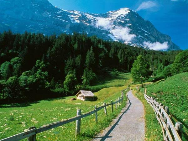 Autotrasporto svizzero vuole più trasporto su gomma