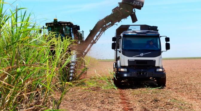 Veicolo Volvo autosterzante per aumentare il raccolto di canna da zucchero in Brasile